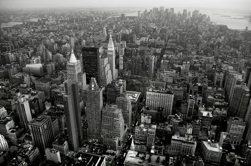New York van bianca dijck