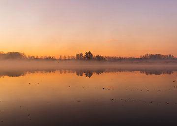 Ein nebliger Morgen. von Wesley Kole