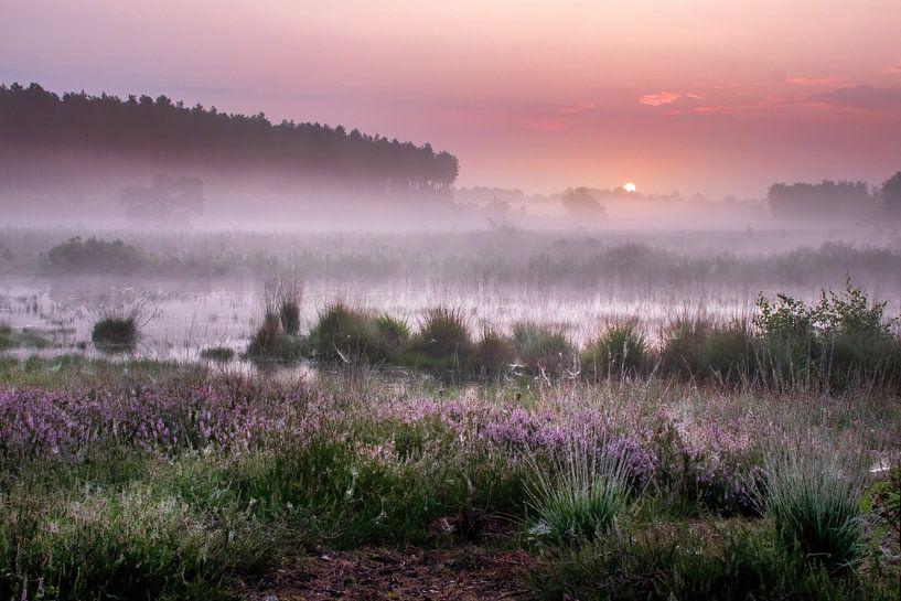 Zonsopkomst op de Teut in Limburg van Peschen Photography