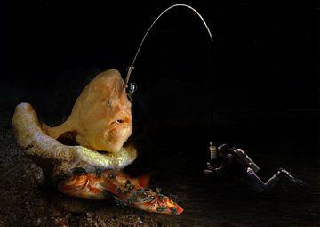 hengelaar vis van Dray van Beeck