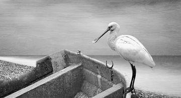 Weisser Vogel von Martina Fornal