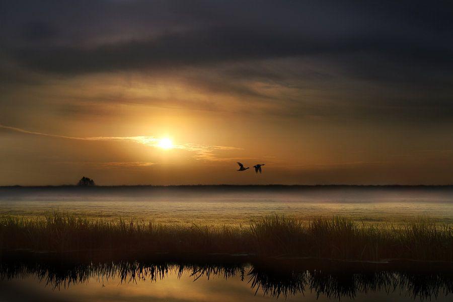 Sunrise van Michelle Zwakhalen