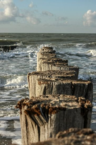 Paalhoofden bij Domburg, Zeeland van Erik Wouters