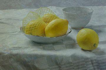 Stilleben 'Zitronen von Willy Sengers