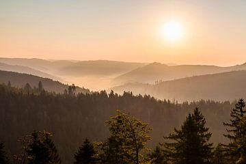 Blick vom Schliffkopf im Schwarzwald bei Sonnenaufgang von
