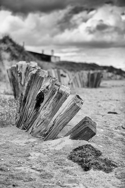 Utah Beach Normandië van Rob van der Teen
