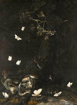 Slangen en insecten, Otto Marseus van Schrieck