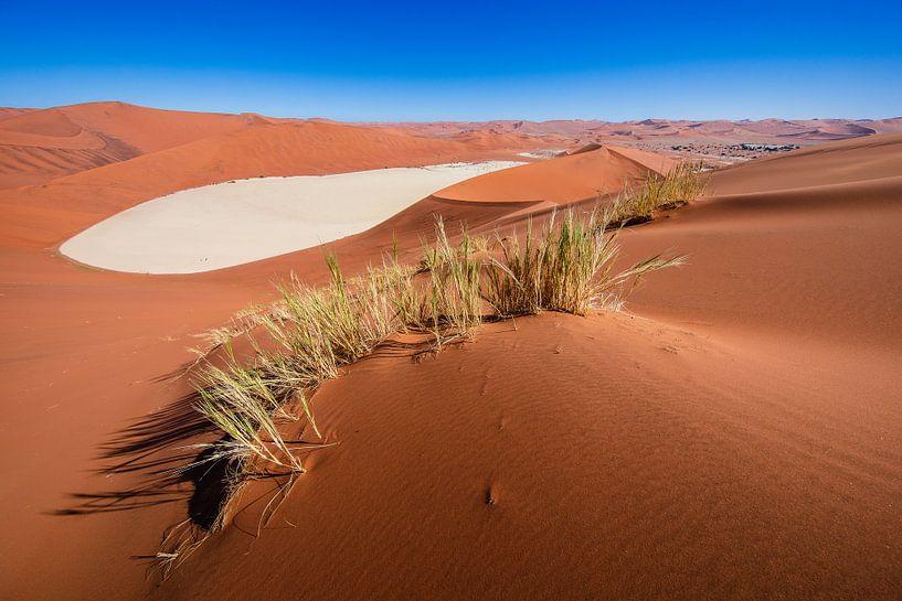 Rode zandduinen rond de Dodevlei / Deadvlei nabij de Sossusvlei, Namibië van Martijn Smeets