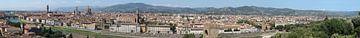 Florence panorama van Carel van der Lippe