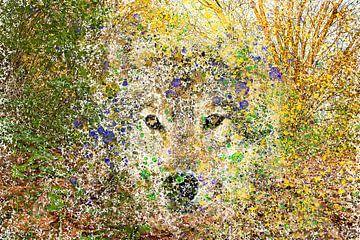 Freier Wolf von Agostino Lo Coco
