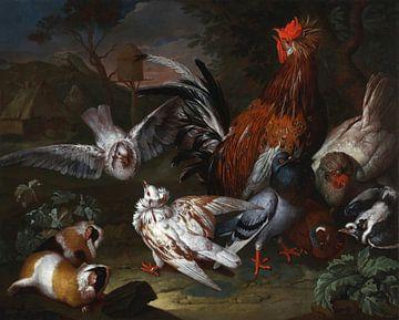 Bauernhofszene mit Schwanz, Tauben und Meerschweinchen, Philipp Ferdinand de Hamilton