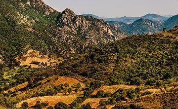 Landschap Sardinië van