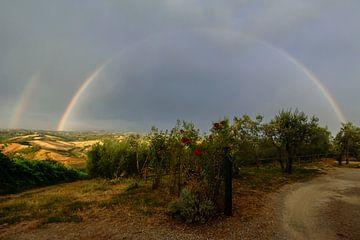 Regenboog en rode rozen - Toscane - Italie von Jeroen(JAC) de Jong