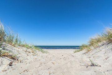 Duinen op het strand in Glowe op Rügen, Schaabe van GH Foto & Artdesign