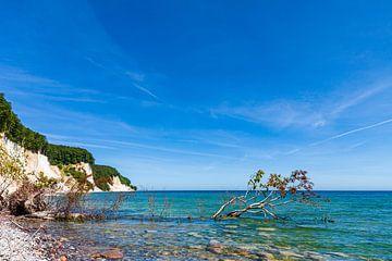 Kreidefelsen an der Ostseeküste auf der Insel Rügen von Rico Ködder