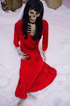 Laatste appelskelet met rode jurk en rode appel van Babetts Bildergalerie