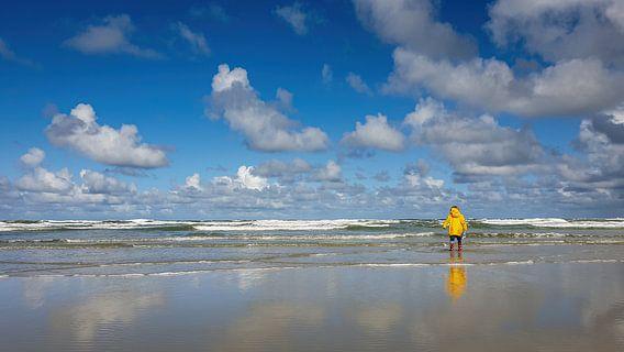 Uitzicht op Noordzee gezien vanaf strand Terschelling