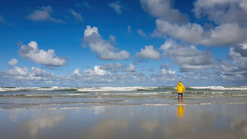 Uitzicht op Noordzee gezien vanaf strand Terschelling van Erwin Maassen van den Brink