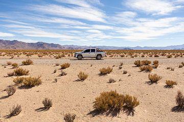 Expeditie woestijn van Merijn Geurts