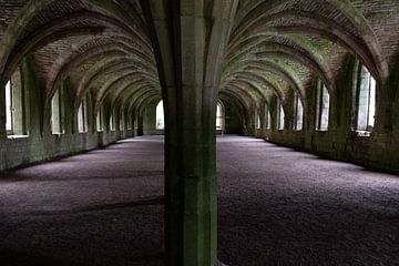 Fountains Abbey sur Lieke Roodbol