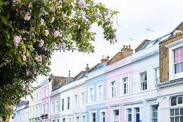 Kleurrijke huizen met roze rozen van Angeline Dobber