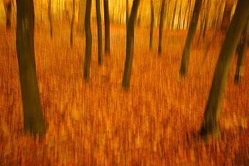 Herbstfarben in Bewegung von Alice Berkien-van Mil