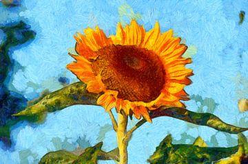 Sonnenblume von Jens-Uwe Ernst
