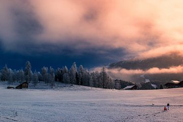 Mistige morgen in Seefeld in Tirol. von Miranda Rijnen