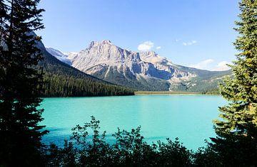 De blauwe wateren van Emerald Lake Canada van Nathan Marcusse