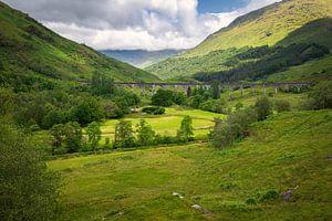Glenfinnan-Viadukt über grünem Tal in Schottland von Arja Schrijver Fotografie