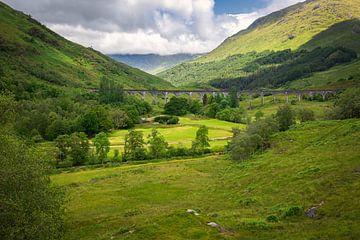 Glenfinnan-Viadukt über grünem Tal in Schottland