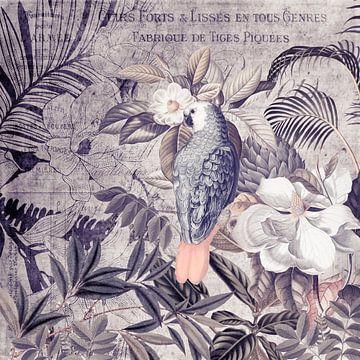 Tropische nostalgie van Andrea Haase