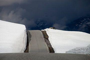 Road to Heaven . Weg naar de Hemel  van Dirk Huijssoon