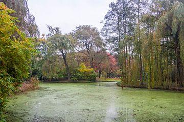 Herfst in Park Buitenoord van Ad Van Koppen