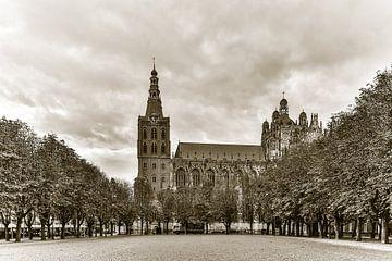 Sint-Janskathedraal en de Parade in 's-Hertogenbosch (back in time) van Fotografie Jeronimo