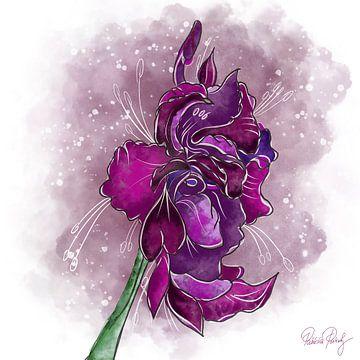 Blumenmotiv - Gladiole