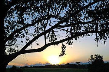 Zonsondergang Landschap no. 10 van Adriano Oliveira