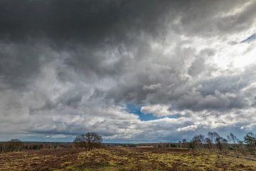 Holländischer Himmel auf der Veluwe von Jacques Jullens