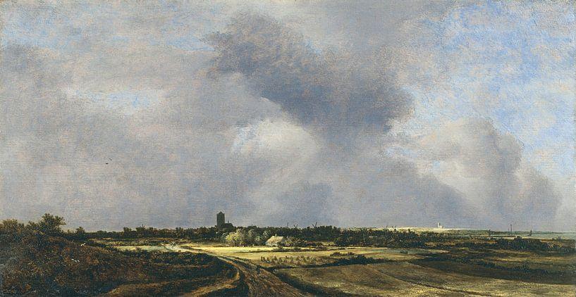 Jacob van Ruisdael - Gezicht op Naarden van 1000 Schilderijen