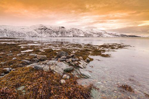 Noors fjord onder rode zonsondergang van