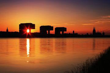 Köln Silhouette im Sonnenuntergang von Frank Herrmann