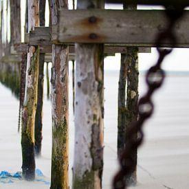 Palen op het strand van Shoots by Laura