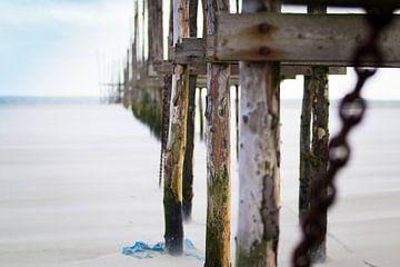 Palen op het strand van