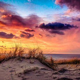 avond in de duinen van eric van der eijk