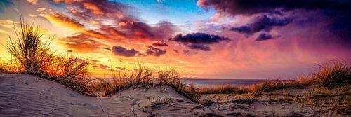 avond in de duinen van