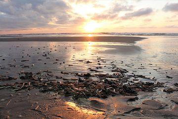Sonnenuntergang Texel von Christel Smits