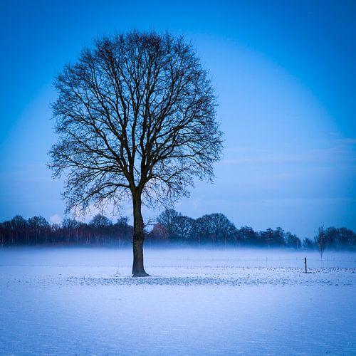 Winter boom van