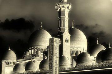 Kuppeln der Scheich Zahid Moschee in Abu Dhabi in schwarz-weiss von Dieter Walther