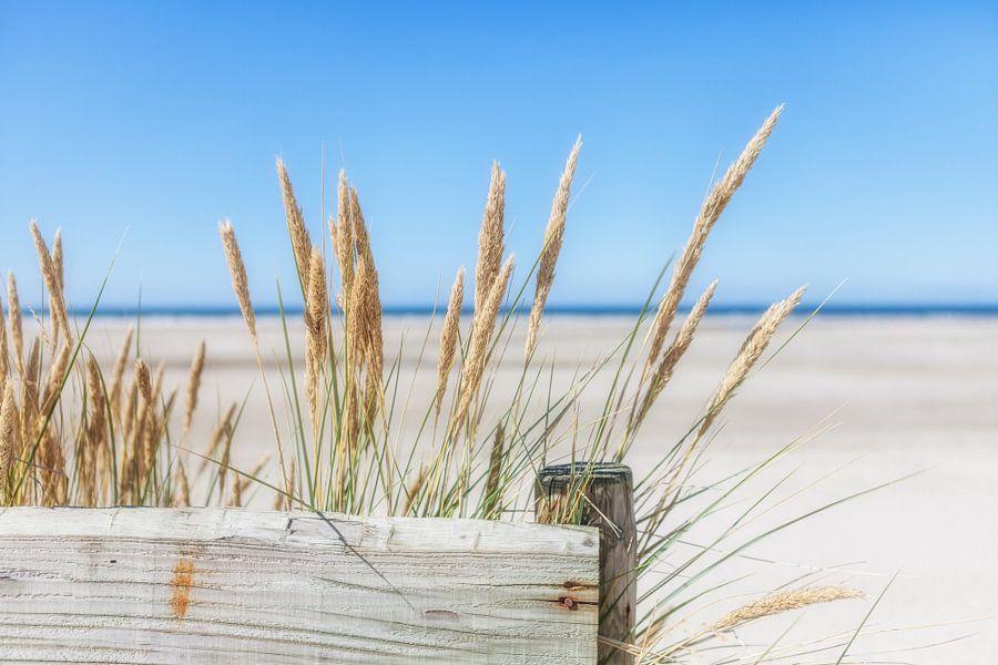 Zomer, zon, zee, zand en rust van R Smallenbroek