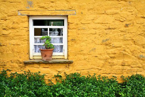 Venster in gele muur van een Ierse cottage van